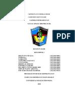 LP GAGAL GINJAL KRONIK.docx
