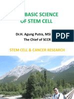 The Basic of Stem Cell.pptx