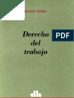 Benito Perez_Derecho Del Trabajo