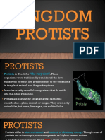 Kingdom Protists