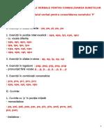 Scheme Si Materiale Verbale Pentru Consolidarea Sunetelor (1)