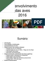 Aula 10 Desenvolvimento Das Aves