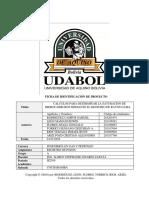 Registro de Pozos_calculos Para Determinar La Saturacion de Hidrocarburos Mediante El Registro de Rayos Gama