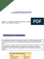 bioseñalizacion.pdf