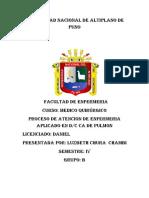 PAE DE ESSALUD.docx