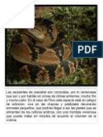 TRTTHHRHR.pdf