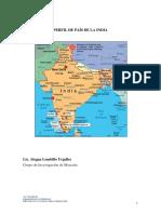 PERFIL PAÍS DE LA INDIA_Alegna.docx