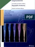 Atlas of Radiographic Anatomy of the Cat - H. Schebitz, H. Wilkens (2004)