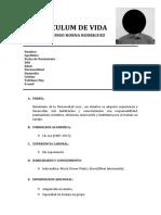 Alonso Horna Rodriguez-curriculum de Vida