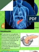 fdisiologia digestiva 2.pdf