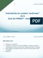 pmbok6_definitivo.pdf