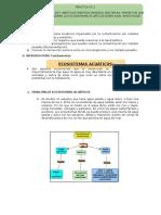 Practica 1 Ecologia