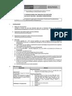 Bases Proceso Cas 238-2018 Segunda Convocatoria