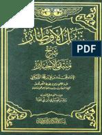 105934.pdf