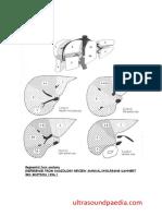 liver-segments.pdf