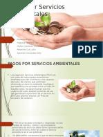 Pago por servicios ambientales