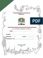 INGENIERIA AMBIENTAL Y FORESTAL1.doc
