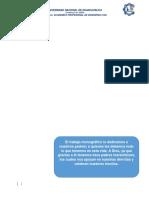 ASENTAMIENTOS INMEDIATOS.docx