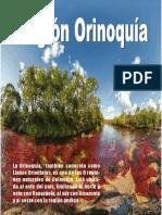 Revista Region Orinoquia