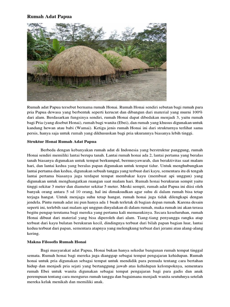 4600 Koleksi Gambar Rumah Adat Daerah Papua HD