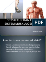 Struktur Dan Fungsi Sistem Muskuloskeletal