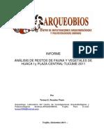 Informe Preliminar-huaca i y Plaza Central-tucume 2011[1]