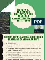 Derecho Ambiental -MÓdulo II SÍlabo