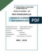 Informe Promotor 15dias