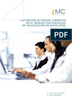 visualizacion_pantallas.pdf