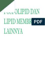 Fosfolipid Dan Lipid Membran Lainnya
