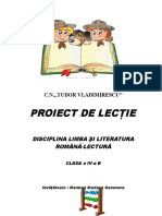 10_proiect_lectura