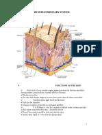Medsurg Integumentary Ana&Physio