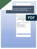 MONOGRAFIA DEGENERACION MACULAR.docx
