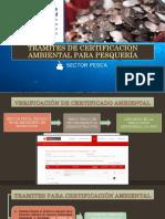 Tramite Certificacion Ambiental Pesqueria