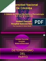 04-Determinismo-del-parto- (1).ppt