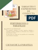 Variantes y Expresiones de Conducta Sexual 3 [Autoguardado]