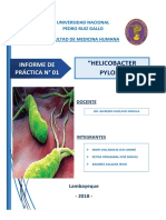 Informe-de-Helicobacter-pylori.pdf