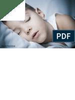 Clinical Neuroanatomy 27E