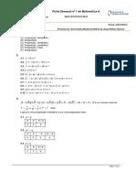 Ficha matemática Resolução
