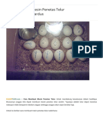 Cara Membuat Mesin Penetas Telur Sederhana Dari Kardus - Kabartani