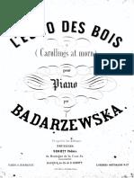 badar_echo.pdf