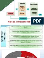 02. CICLO DE VIDA.pdf