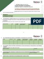 Formato de Información Segundo Informe de Gobierno (1)