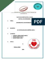 INFORME FINAL DEL EXTERNADO.docx