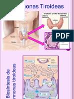 Hormonas Tiroideas y Regulación de la Calcemia.pptx
