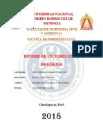 CRUZ CORONADO- INFORME DE VECTORES - copia.docx