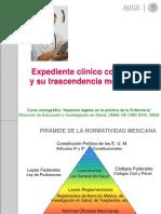 6.-expedienteenfermeriaimpliclegales-2014.ppt
