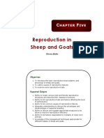 Chapter 5_ Reproduction in Sheep and Goats