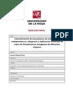 Dialnet-CaracterizacionDeMecanismosDeResistenciaACarbapene-43839