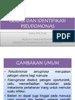 Minggu 1_ ISOLASI DAN IDENTIFIKASI PSEUDOMONAS.pptx